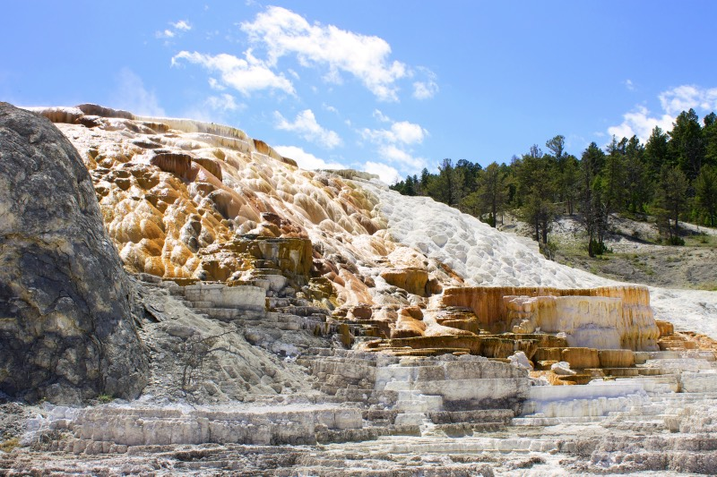 8-Mammoth-Hot-Springs