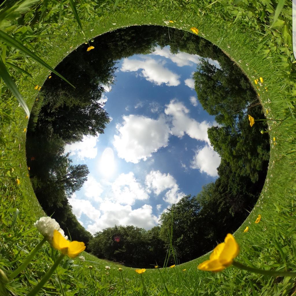 360-graden-foto-in-het-gras