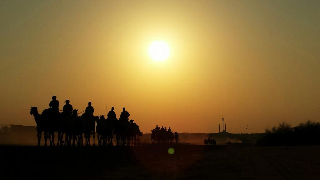 wpid-kamelen-zonsondergang.jpg