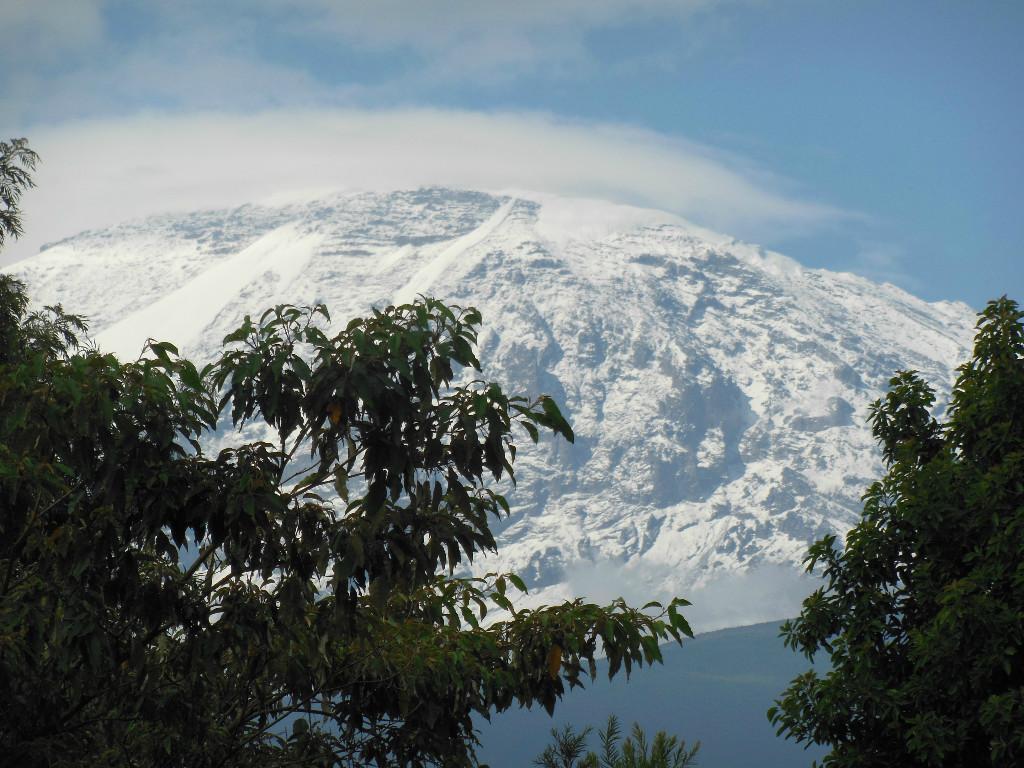 Tanzania Kilimanjaro reizen