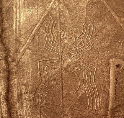 bezoek aan de Nazca-lijnen Nasca spin