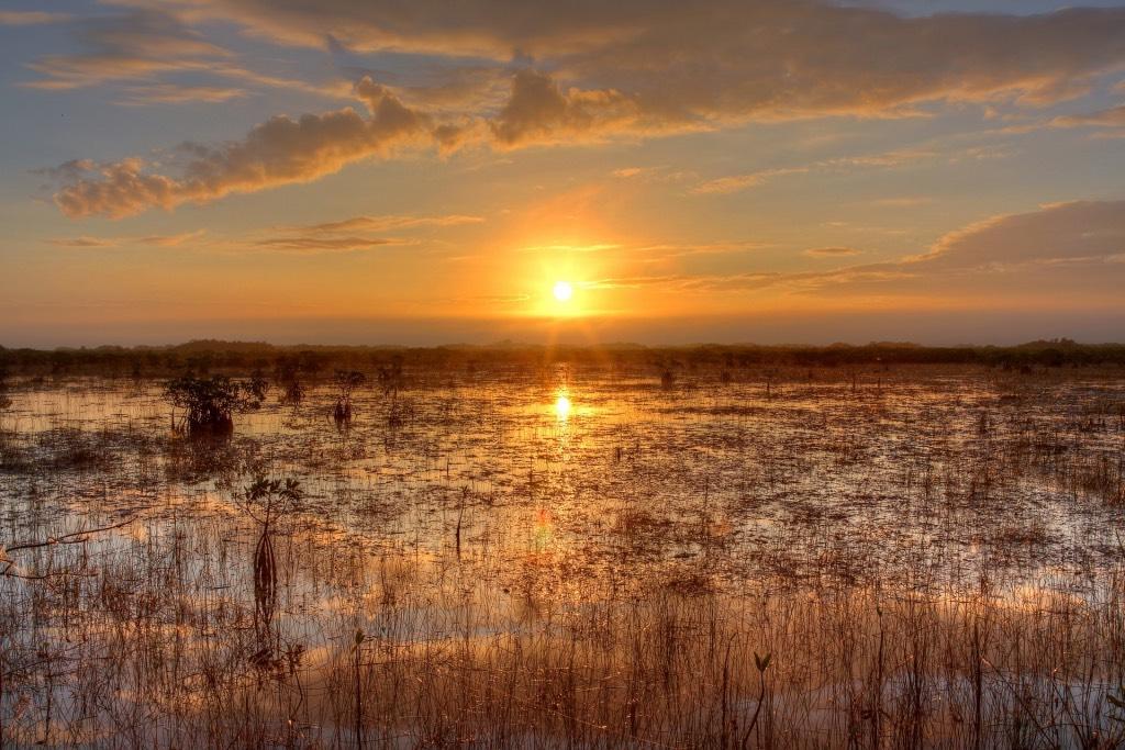 zonsondergang in de everglades