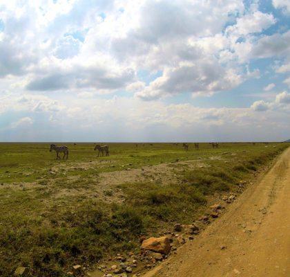 Tanzania Lake Manyara